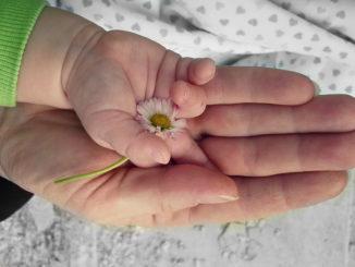 Nachhaltigkeit und Baby - Grün denken und handeln geht auch als frische Mama