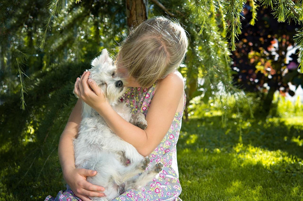 Mehr als ein Haustier - der Hund als bester Freund
