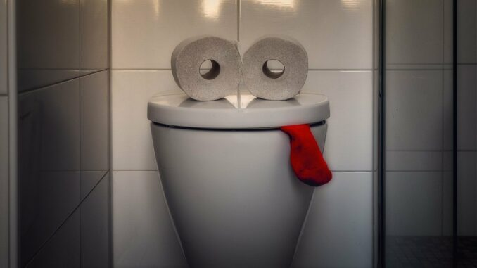 Popo Dusche statt WC Papier