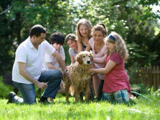 Fotoshooting mit der Familie – eine schöne Idee für viele Anlässe