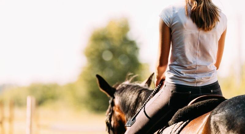 Warum Pferde eine unwiderstehliche Faszination auf Mädchen ausüben